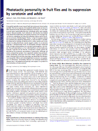 first page of the fly phototactic personality paper